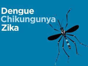 Read more about the article SNS y SRSND participaran activamente en Jornada Nacional Contra Dengue
